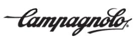 http://www.bikestore-baier.de/img/Schriftzug%20Campagnolo.PNG